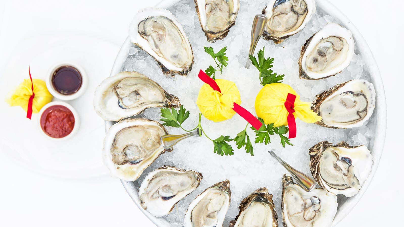 Succulent Oysters on half shell for charity in Houston