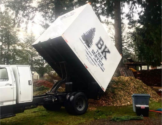 BK Tree Service offers free wood chips with our massive chip truck - Olympia, WA