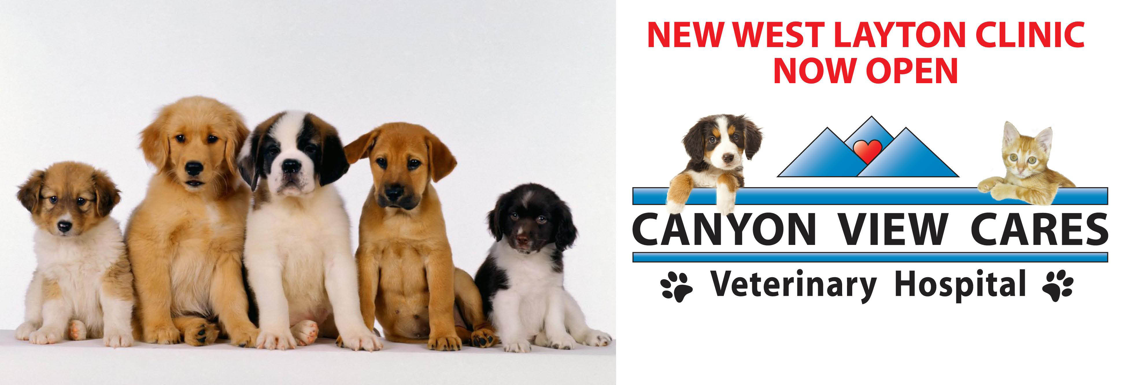 Canyon View Cares Veterinary Hospital Banner