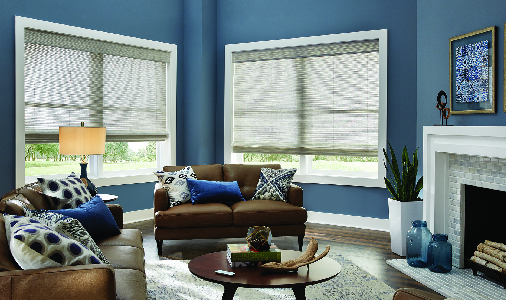 Blinds for picture windows in living room