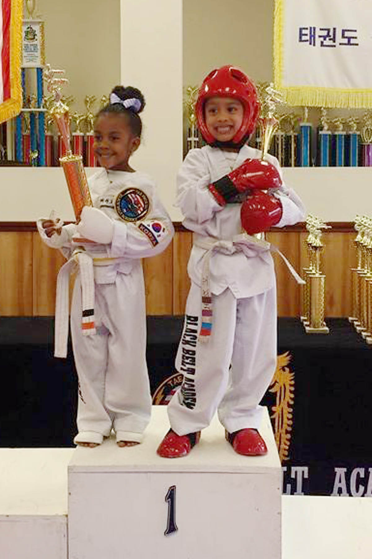 Martial Arts, Tae Kwon Do, Karate, classes