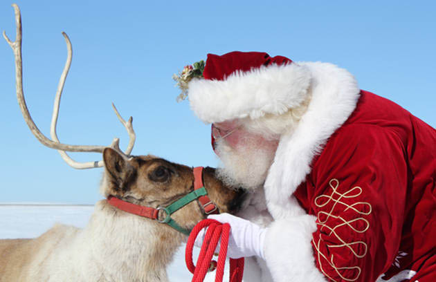 Santa visit and live reindeer at the Buckley Community annual tree lighting - Buckley, Washington