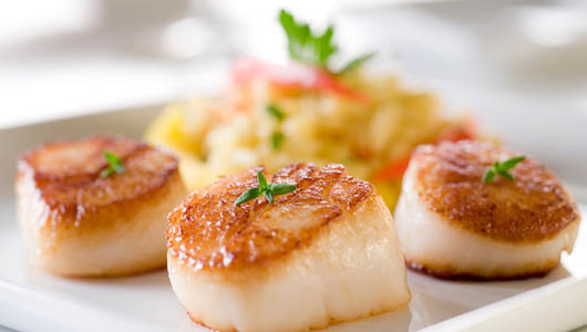 scallops,fresh scallops,sea food,discount,newark de,crab,