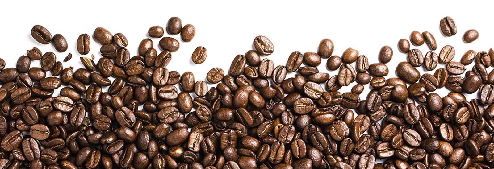 Caffe Appassionato in Seattle, WA banner image