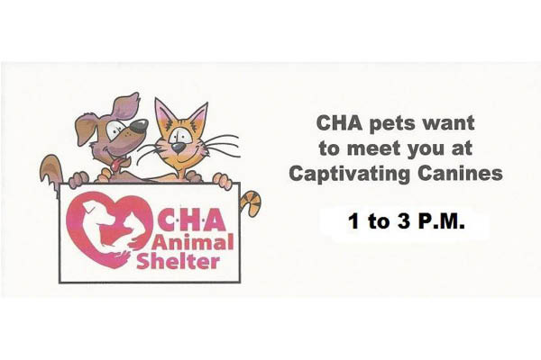 Captivating Canines CHA events