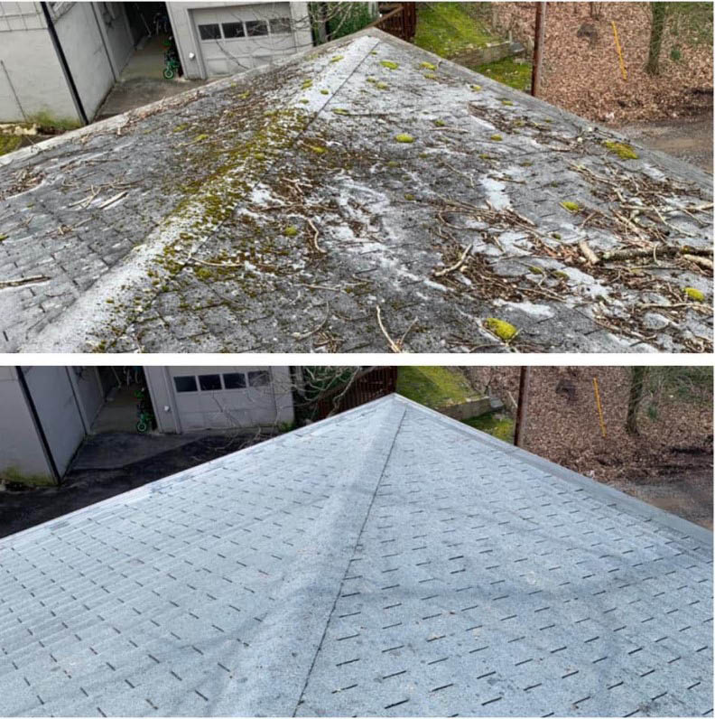 Soft washing roof before & after photo