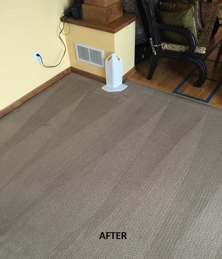 Twin Cities Finest Carpet Cleaning After
