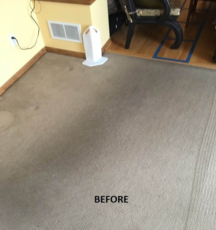 Twin Cities Finest Carpet Cleaning Before
