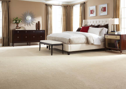 Let The Carpet Guys install carpet in your Michigan home