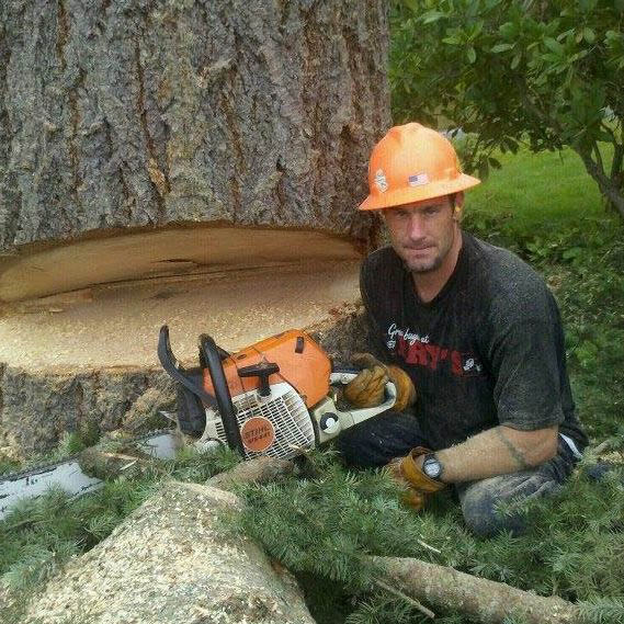 Chambers Enterprises, LLC in Everett, Washington - professional tree services - professional tree removal - full service tree service