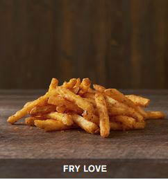 photo of fries from Checkers and Rally's