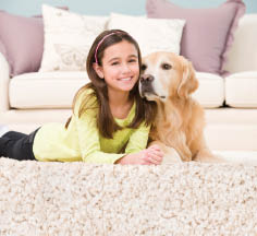 Pet odor removal on carpet near Valley Center