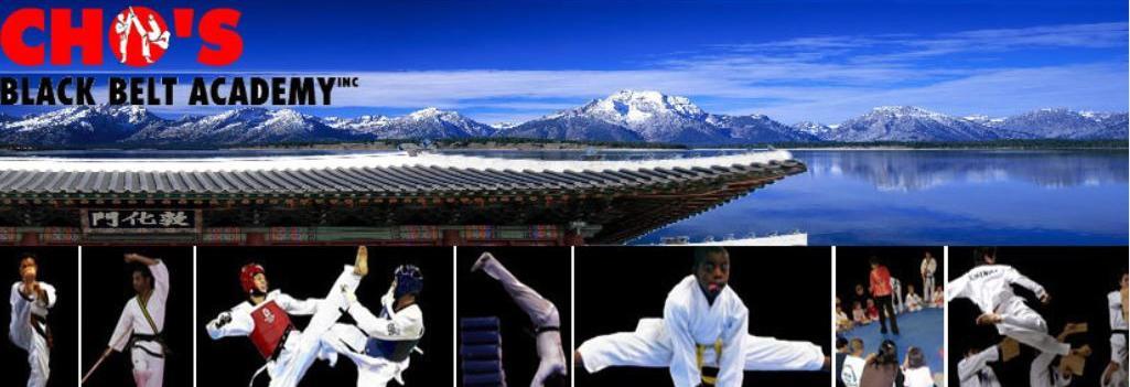 Cho's black belt academy in winchester, va