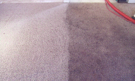before and after carpet cleaning from Coastal Clean Inc