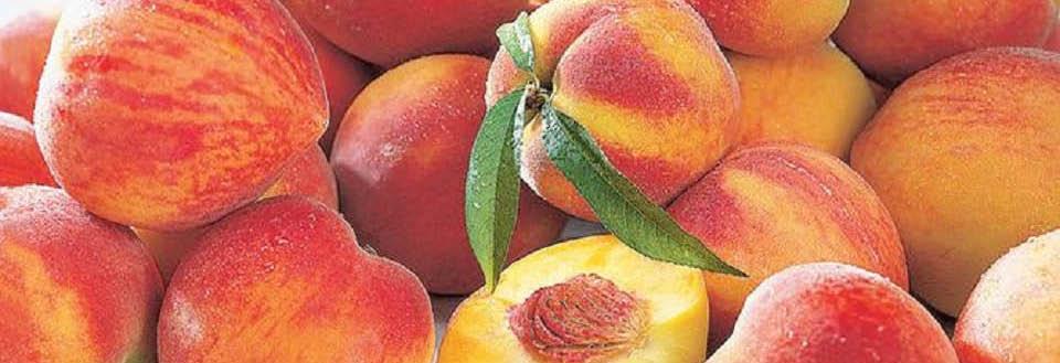 Peach Festival & Country Auction at Community Presbyterian Church
