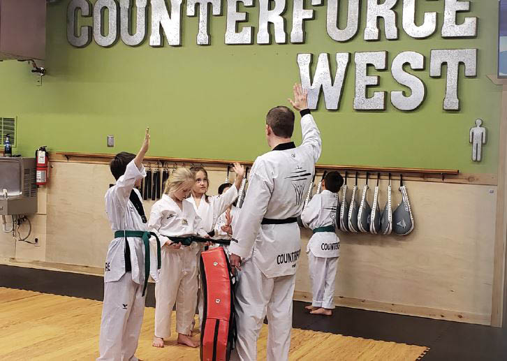 Counterforce Taekwondo West Seattle, WA - Martial arts classes for kids, teens and adults - Taekwondo classes for all ages