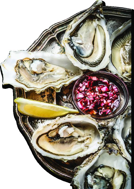 oystersfresh oystersraw oysters
