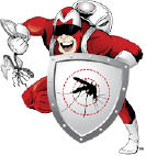 Mosquito Shield cartoon mascot superhero; mosquito repellent; tick spraying; Springfield, Massachusetts area