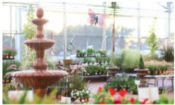 Flowers to fountains, planters to potting soil at Dale Ace Hardware