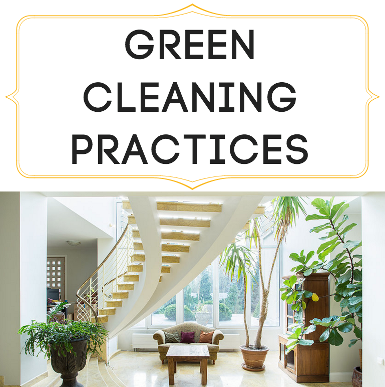 Dazzle Cleaning Company in Seattle, WA uses green cleaning practices in all of their house cleaning to protect the environment