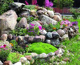 Rock-Gardens