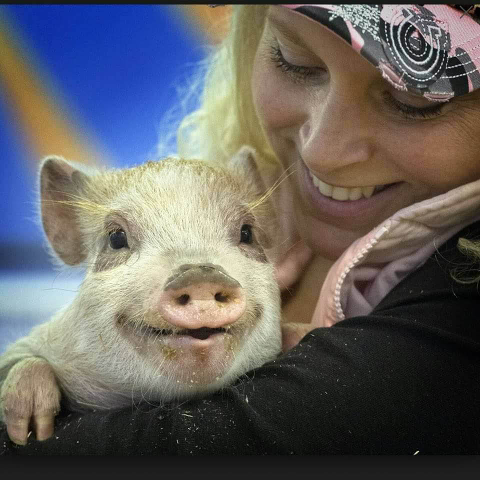Woman holding an adorable little pig at Debbie Dolittle's Petting Zoo in Tacoma, WA - petting zoos near me