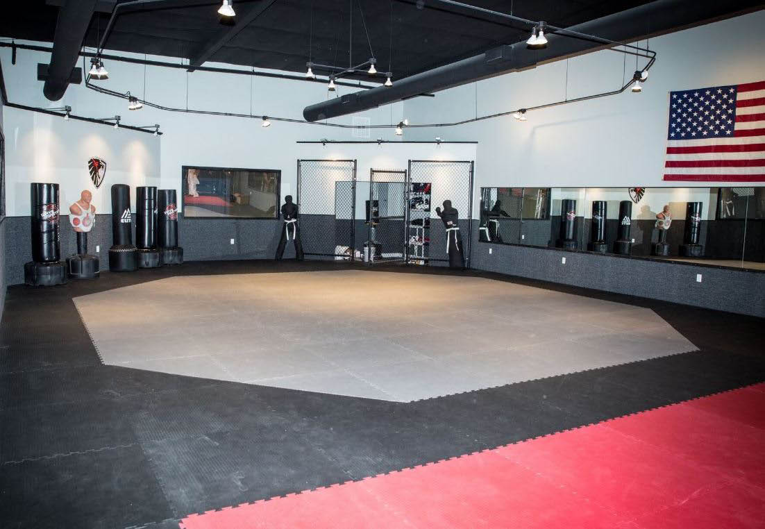 Learn martial arts in Houston