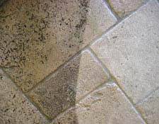 carpet cleaning, upholstery cleaning, air duct cleaning, tile and grout cleaning