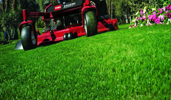 Lawn, Mowing, Grass