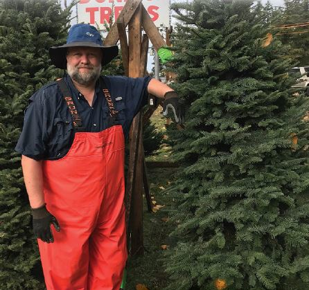 Donna's Trees has been serving the Seattle area for over 40 years! - Bothell, WA Christmas tree lot - get your Christmas tree here