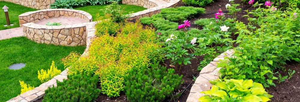 Dove Landscaping in Lakewood, WA banner image