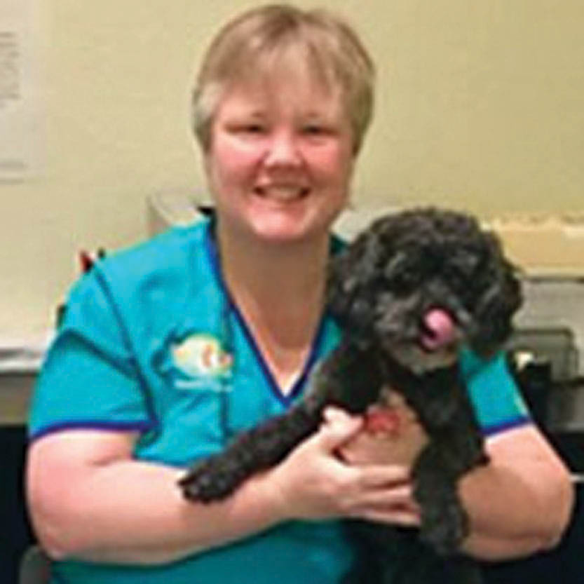 dr. kathy owner & veterinarian dr. kathy's veterinary care north redington beach, fl