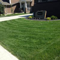 Lawn care service, maintenance, shrubs Chicago, IL