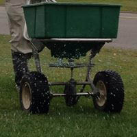 Dr. Green provides grub control in Chicago area lawns