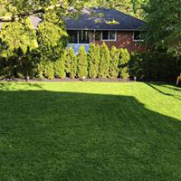 Let Dr. Green provide services to make your grass greener