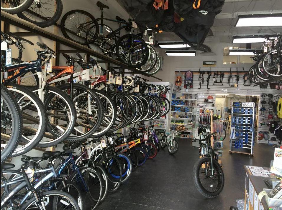 bike shop, bike repair, bike tune up, snow board, ski service, skate boards in Winchester, VA