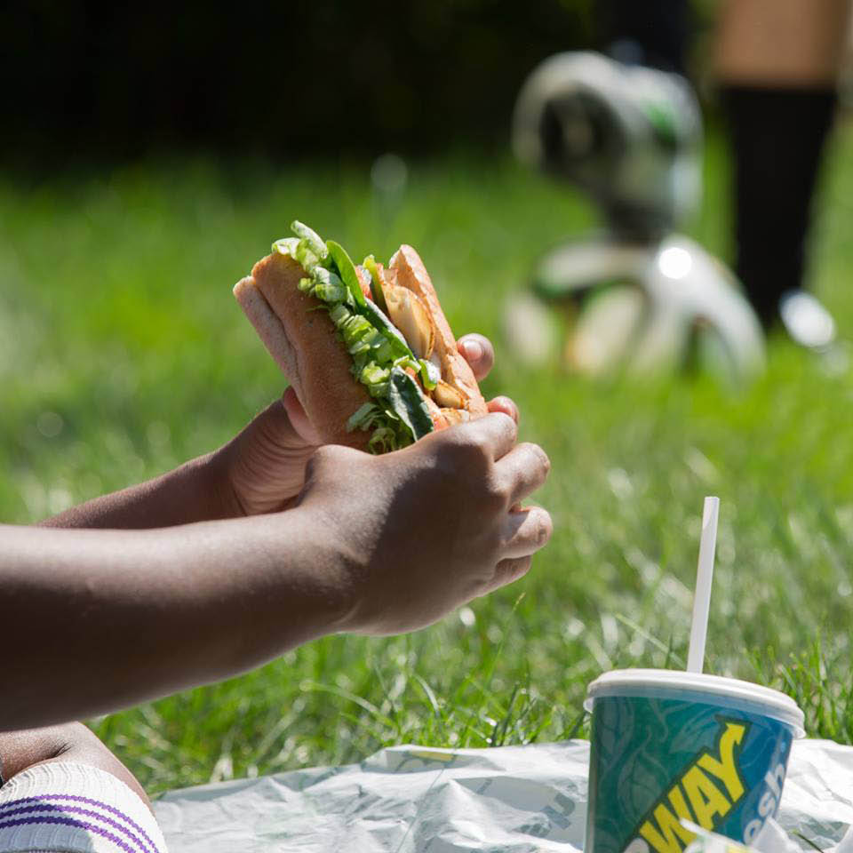 Tacoma, Washington - Lacey, Washington - enjoy lunch outside with a delicious sub sandwich from Subway