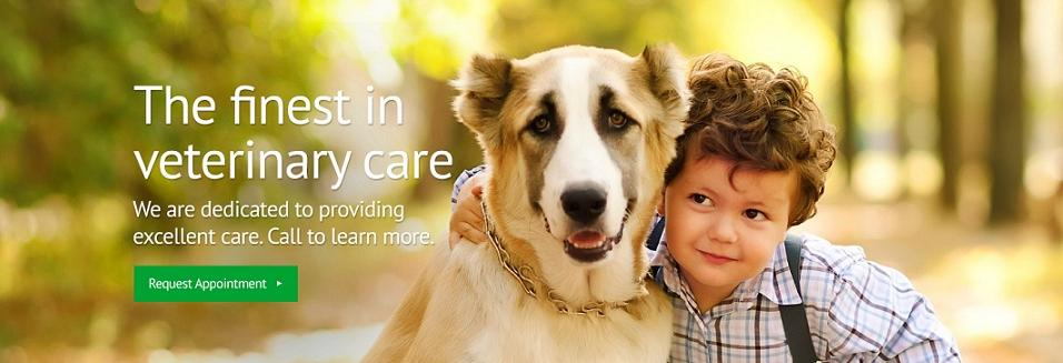 veterinary care near me vet near me pet care coupons
