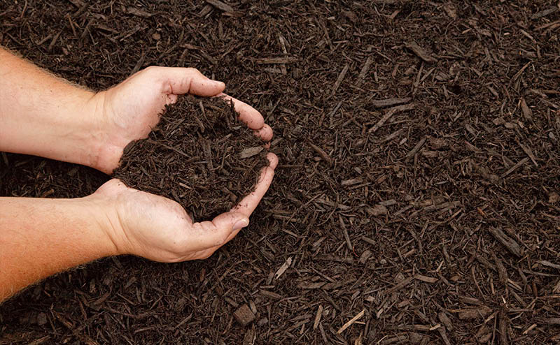 We install mulch of all colors and kinds