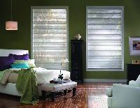 affordable blinds on a pair of windows in a NY home