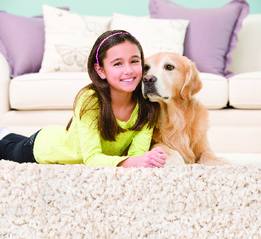 Child and dog on cleaned carpet