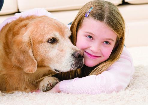 Pet & child-friendly carpet cleaning