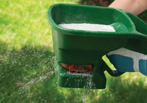 Fertilizing for full, healthy and disease free lawns.