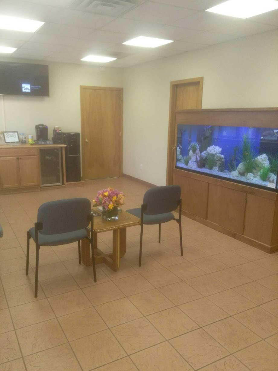 inside view fieldstone veterinary care new fairfield