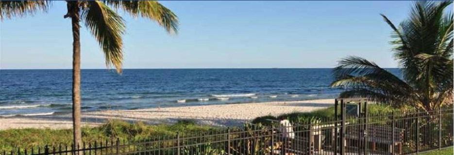 palm trees pompano beach, florida