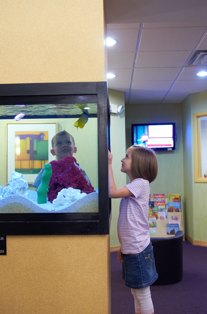 Kids love the fish tank at the dentist office of Grove Dental Associates in Downers Grove