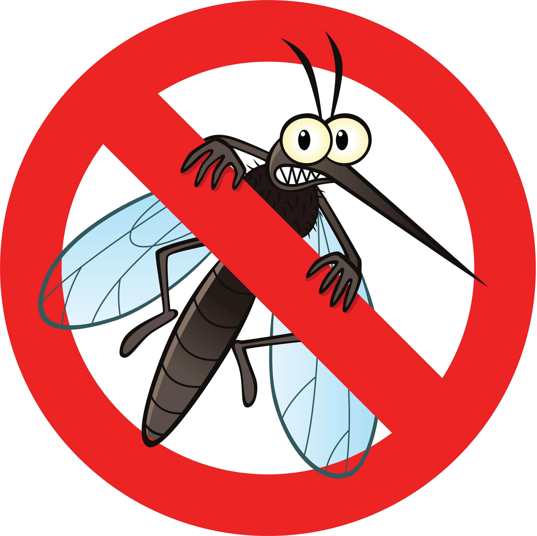 Pest Control Near Me - Essex County Pest Control - Pest Services Near Me - Pest Control Livingston, NJ