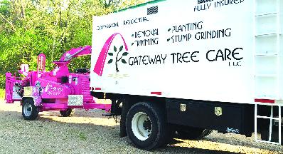 Tree service near St. Charles