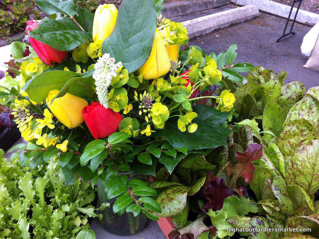 Gig Harbor Farmer's Market - beautiful flowers - plants - herbs - Gig Harbor, Washington