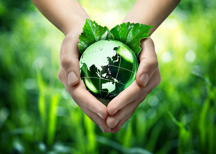 Eco-friendly Green Dry Cleaners in Orlando